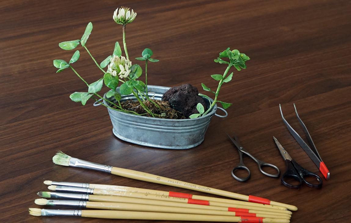 粘土で作る たまらなく愛おしい野の花教室
